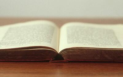 Słownik SEO – lista tematów związanych z SEO, które warto znać