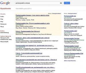 porownywarki cenowe a google